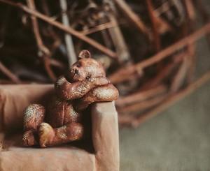 bear-clay